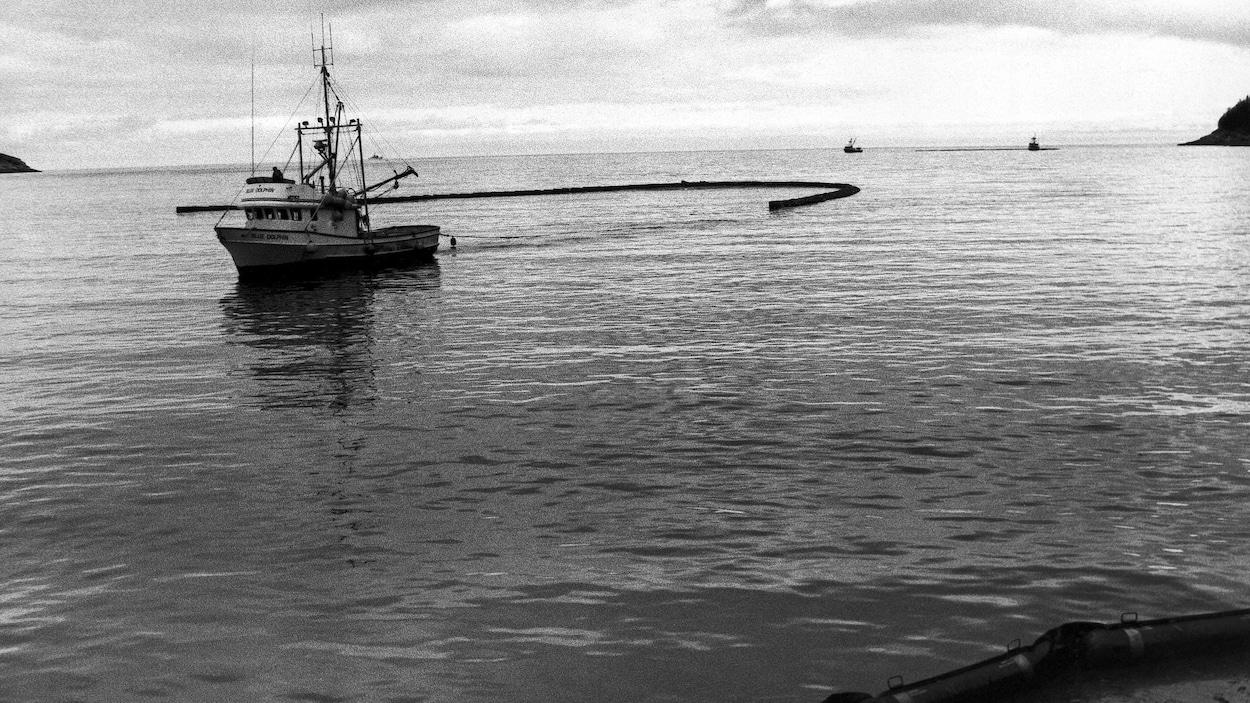 Nettoyage des eaux dans la péninsule de Kenai, en Alaska, le 4 mai 1989, à la suite de l'échouement de l'Exxon Valdez.