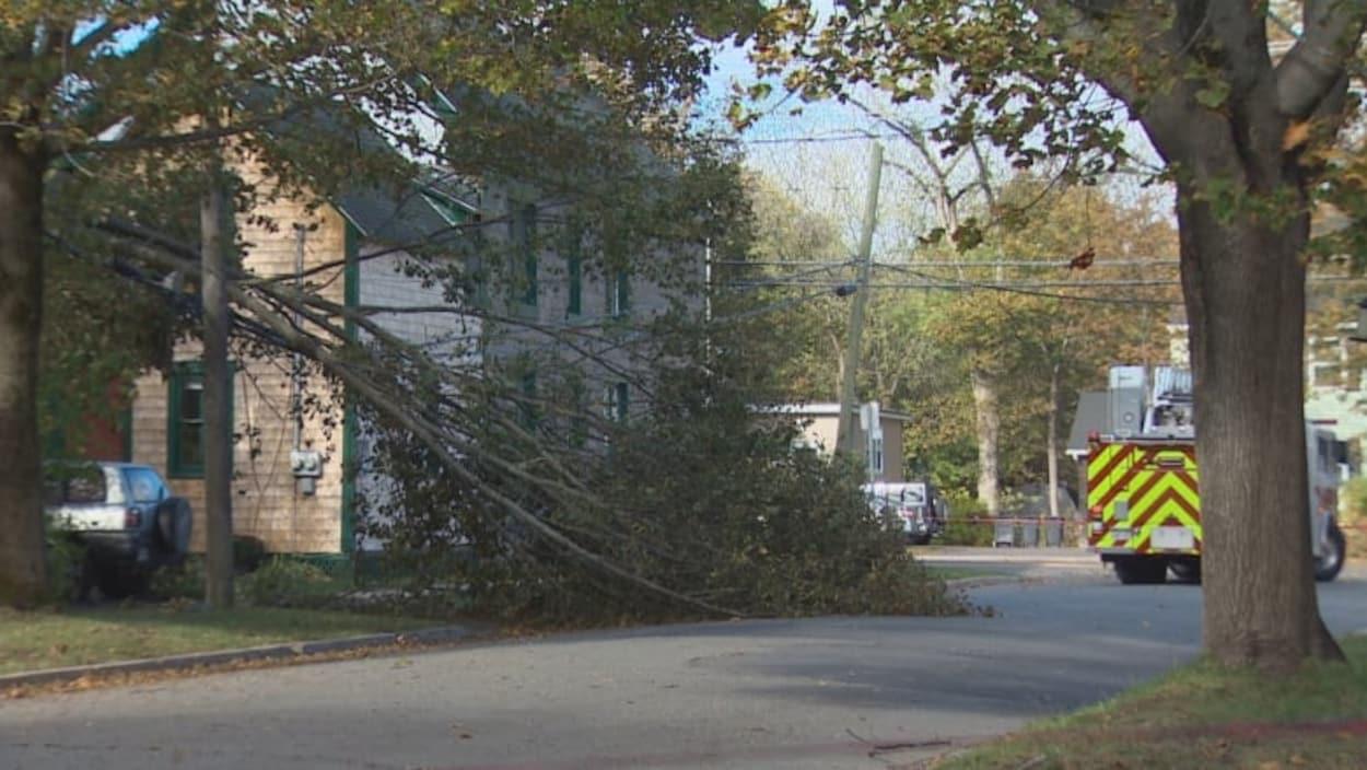 Les pannes d'électricité se multiplient au Québec en raison des fortes rafales