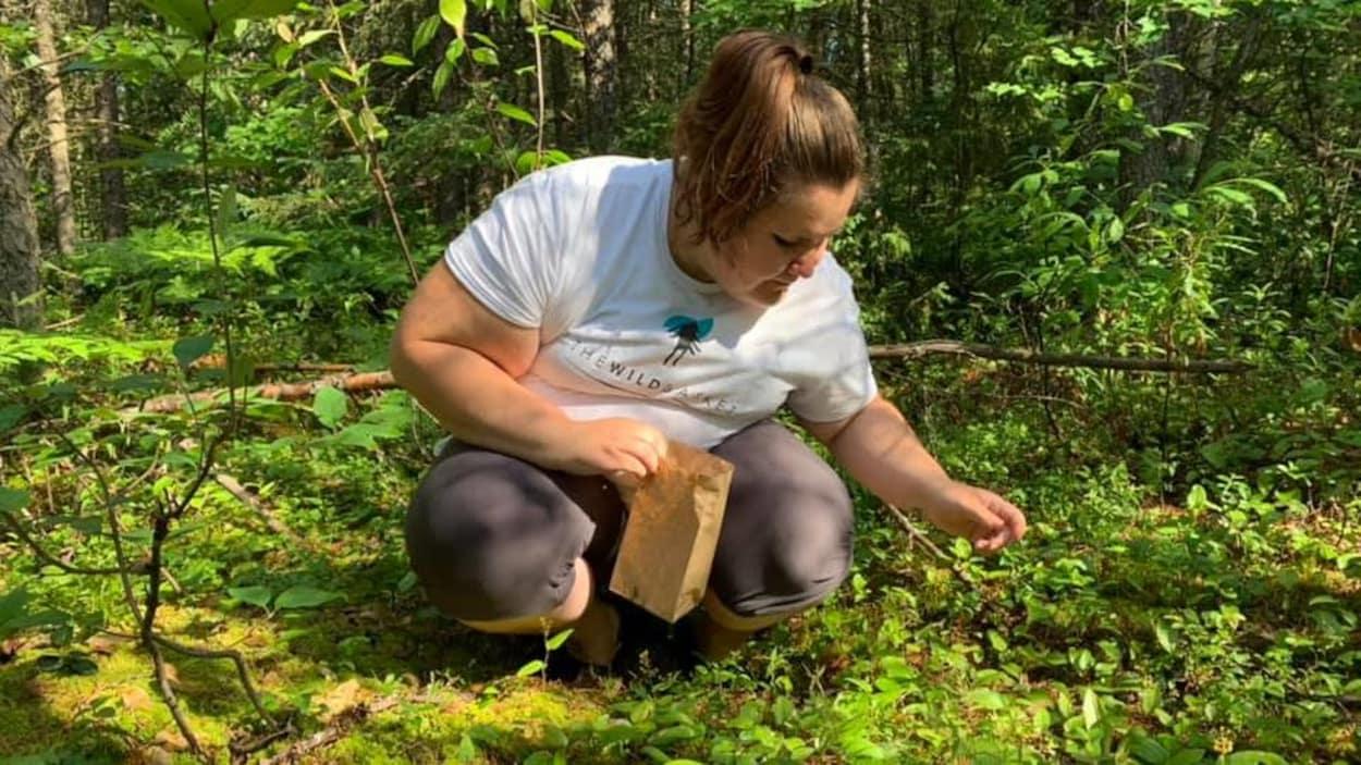 Une femme accroupie cueille des champignons.