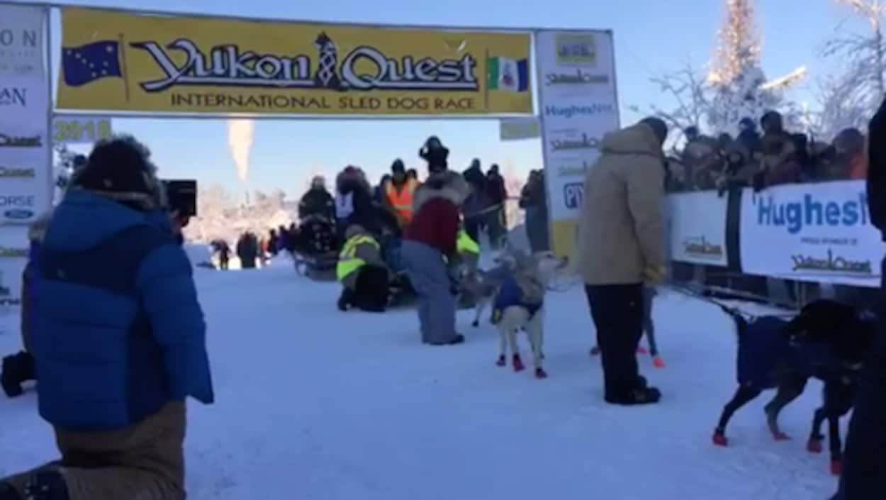 Des gens s'intéressent à des chiens de traîneau sous une bannière marquant la ligne de départ du Yukon Quest.