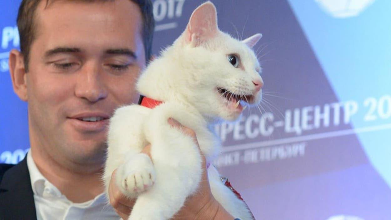 Mondial 2018: Achille, un chat sourd, désigné pronostiqueur officiel de la compétition