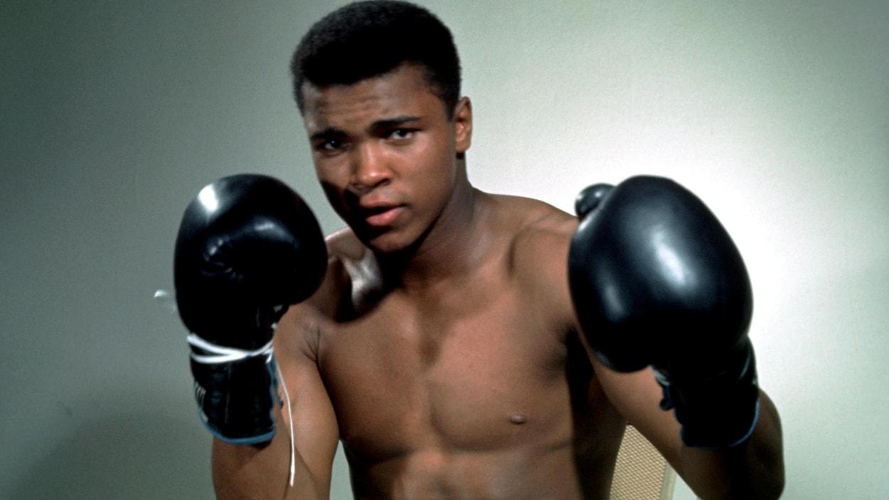 Boxe - Donald Trump pourrait grâcier Mohamed Ali