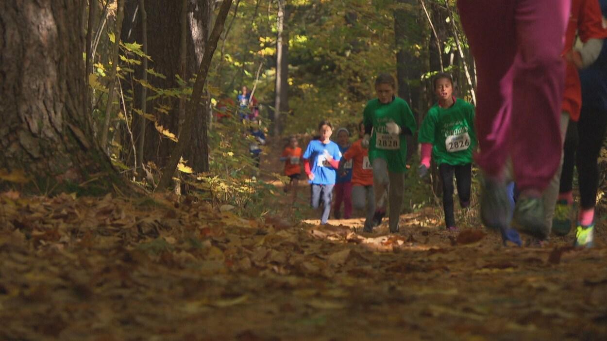 De jeunes coureurs s'élancent dans un sentier boisé lors d'une course.