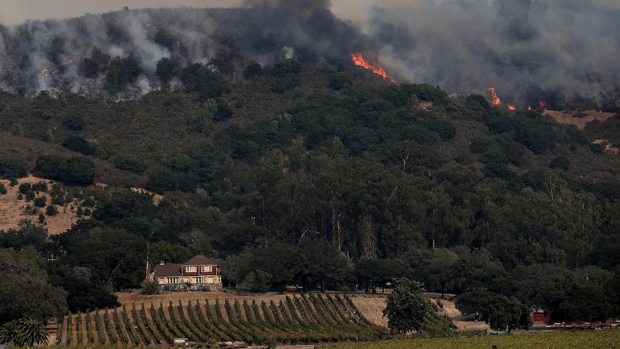 Les feux de forêt faisant rage dans la vallée de Sonoma.