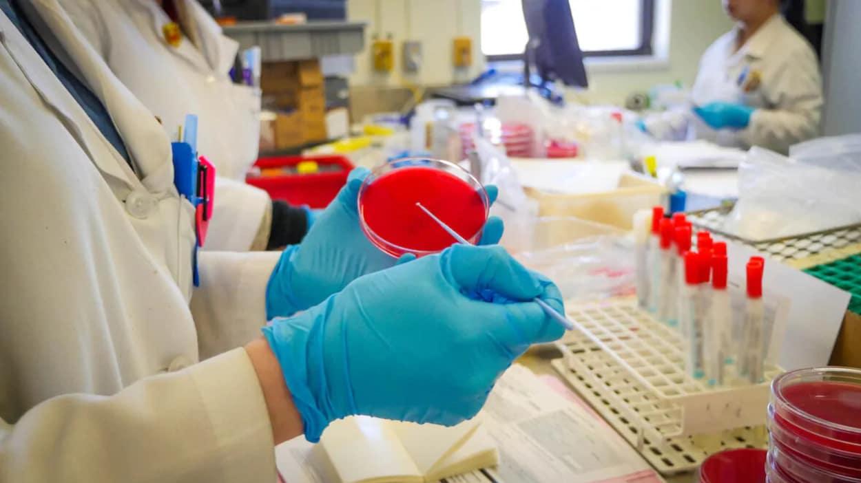 Une personne portant des gants effectue un test en laboratoire.