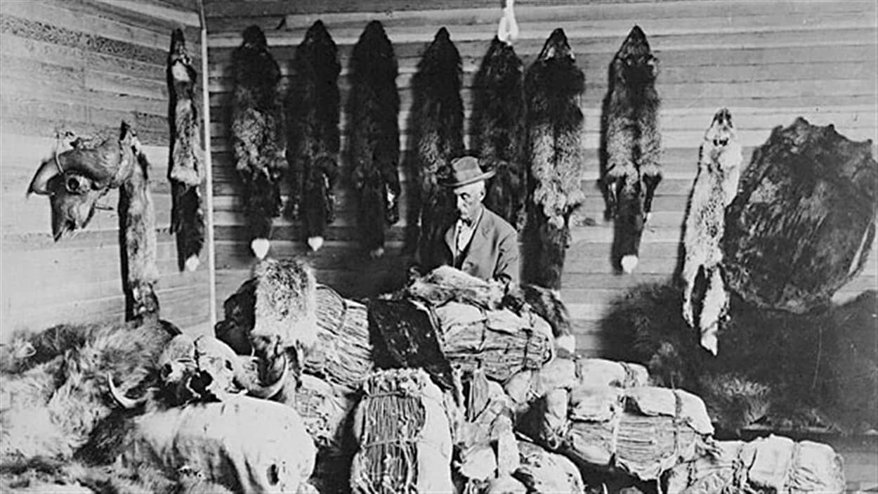 Un homme pratiquant le commerce de la fourrure en Alberta, au Canada, dans les années 1890. / © Jkelly, Wikipédia