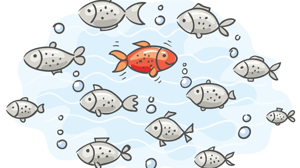 Les poissons d'avril s'agitent dans les médias une fois par année.
