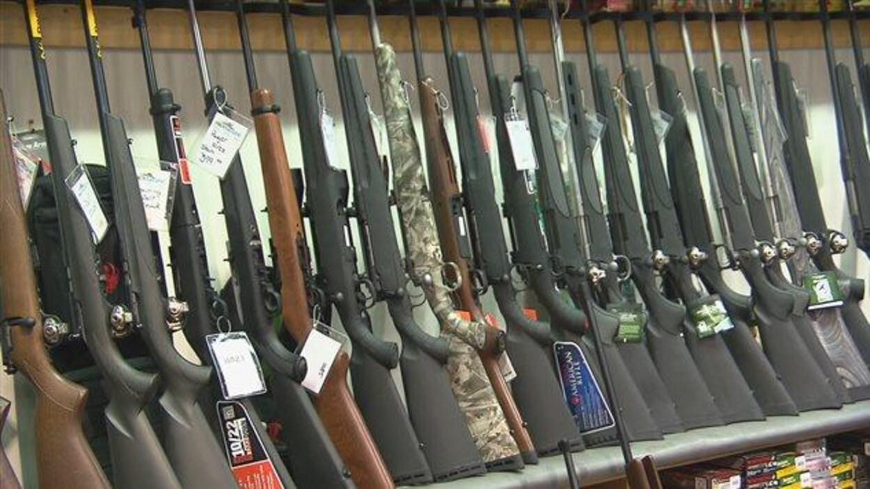 Un étalage de fusils de chasse chez un marchand