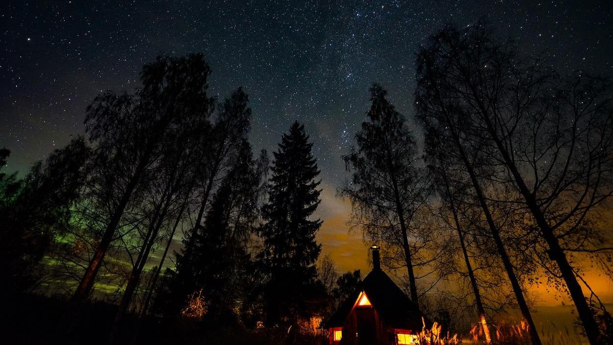 Image nocturne tournée vers le ciel débordant d'étoiles.