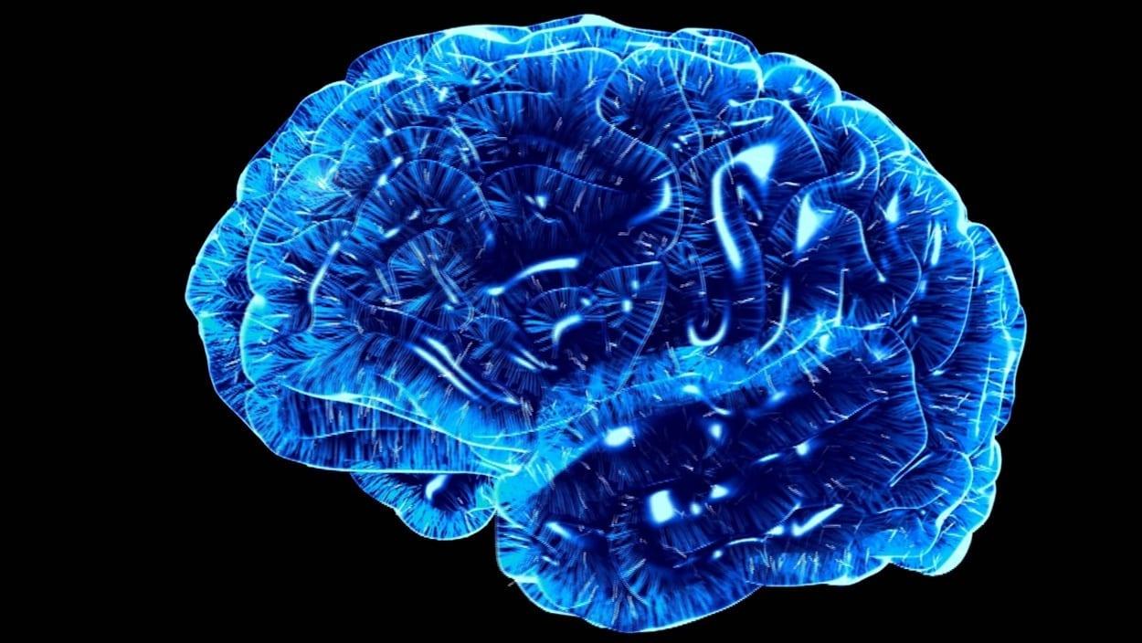 Cerveau en luminescence