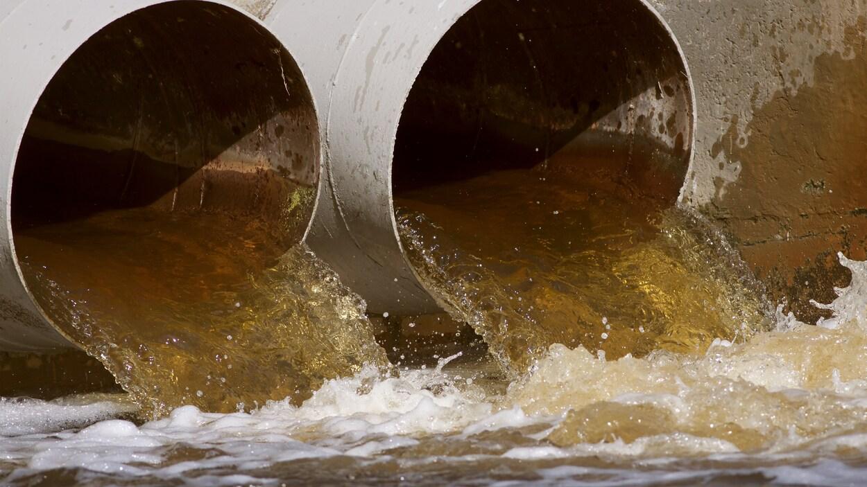 De l'eau, en bon débit, sort de deux gros tuyaux et se déverse dans un cours d'eau.
