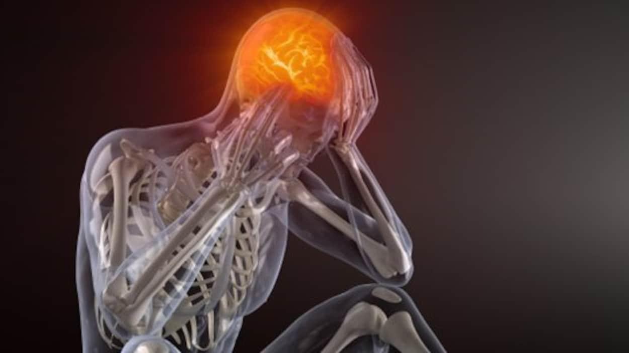 Transparent numérique d'un corps humain et le cerveau