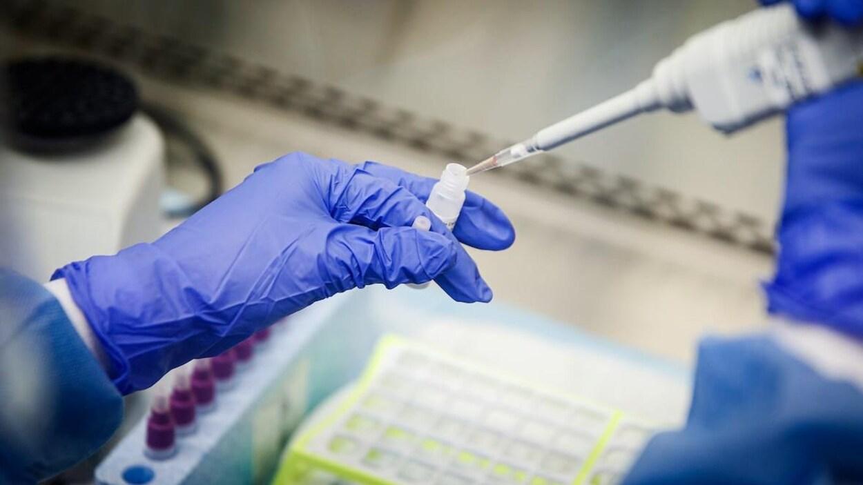 Une personne avec des gants dépose un liquide dans une éprouvette.