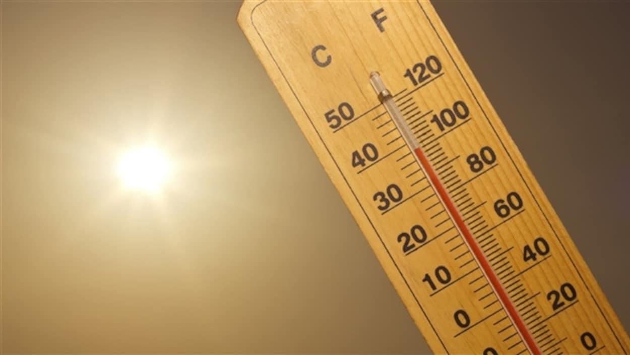 Un thermomètre.