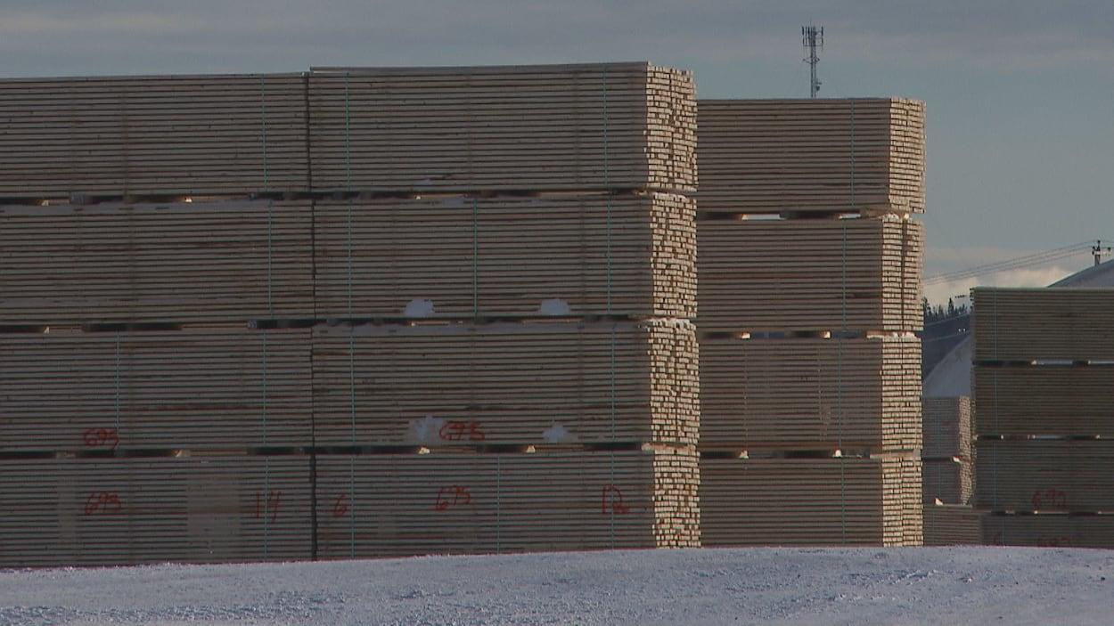 Piles de bois dans la cour d'une scierie