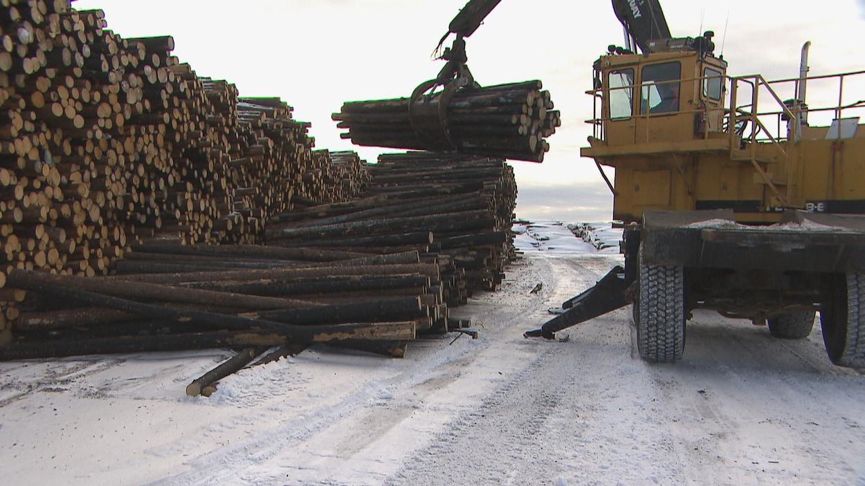 Une chargeuse empile du bois dans la cour de l'usine.