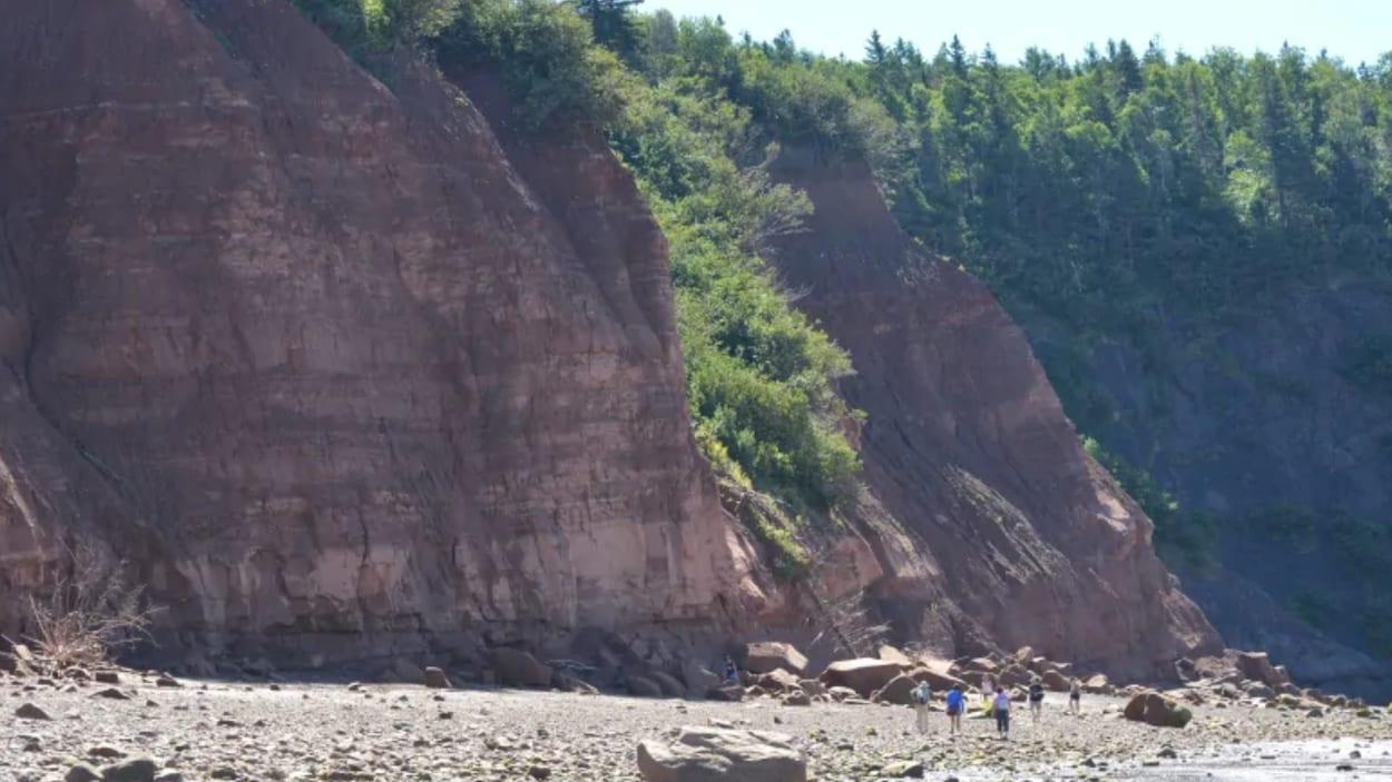 Les falaises de Fundy à Five Islands, en Nouvelle-Écosse.