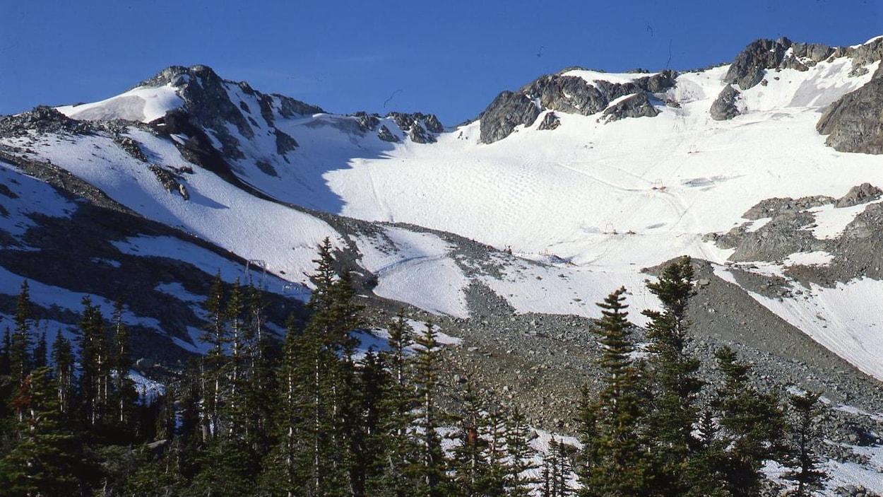 Image du glacier de Whistler en Colombie-Britannique avec des arbres en avant-plan.
