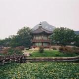 Dans les jardins du Palais de Gyeongbokgung, à Séoul.