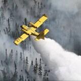 安大略省西北部、曼尼托巴省都出现了多处林火。