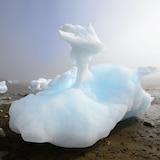 Des morceaux de glace de mer en train de fondre en plein jour.
