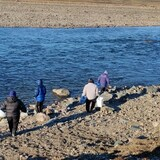 People are shown walking along a rocky beach.