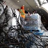 Cargaisons de bouteilles d'eau dans un avion.