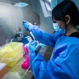 تقنيّة في مختبر تعمل على اختبار الكشف عن فيروس كورونا.
