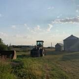 L'arrière court d'une ferme, un tracteur au centre de l'image et de petits silos à grains sur la droite.