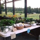 une table en extérieur avec des produits locaux.