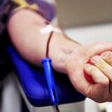 Le bras d'un donneur de sang.