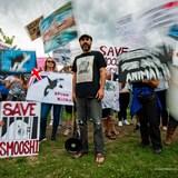 Phil Demers (au centre), entouré de manifestants qui brandissent des affiches dénonçant le traitement des animaux de Marineland.