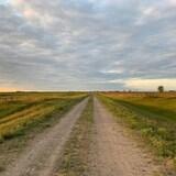 Une route de campagne en milieu agricole en fin de journée.