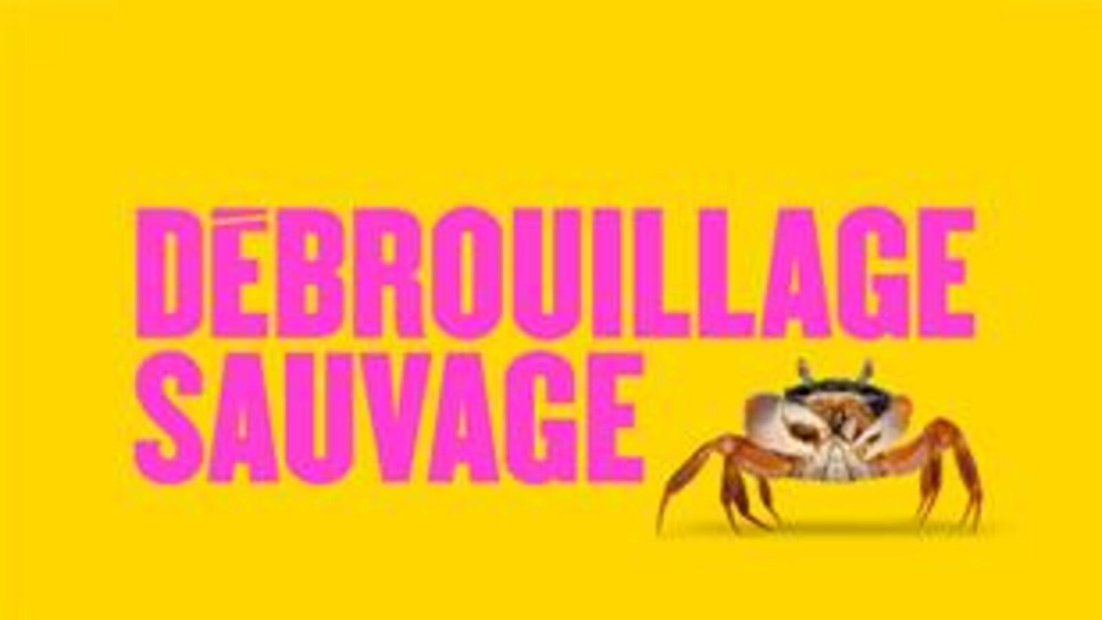 Le visuel du Débrouillage sauvage qui met en scène un crabe sur fond jaune.