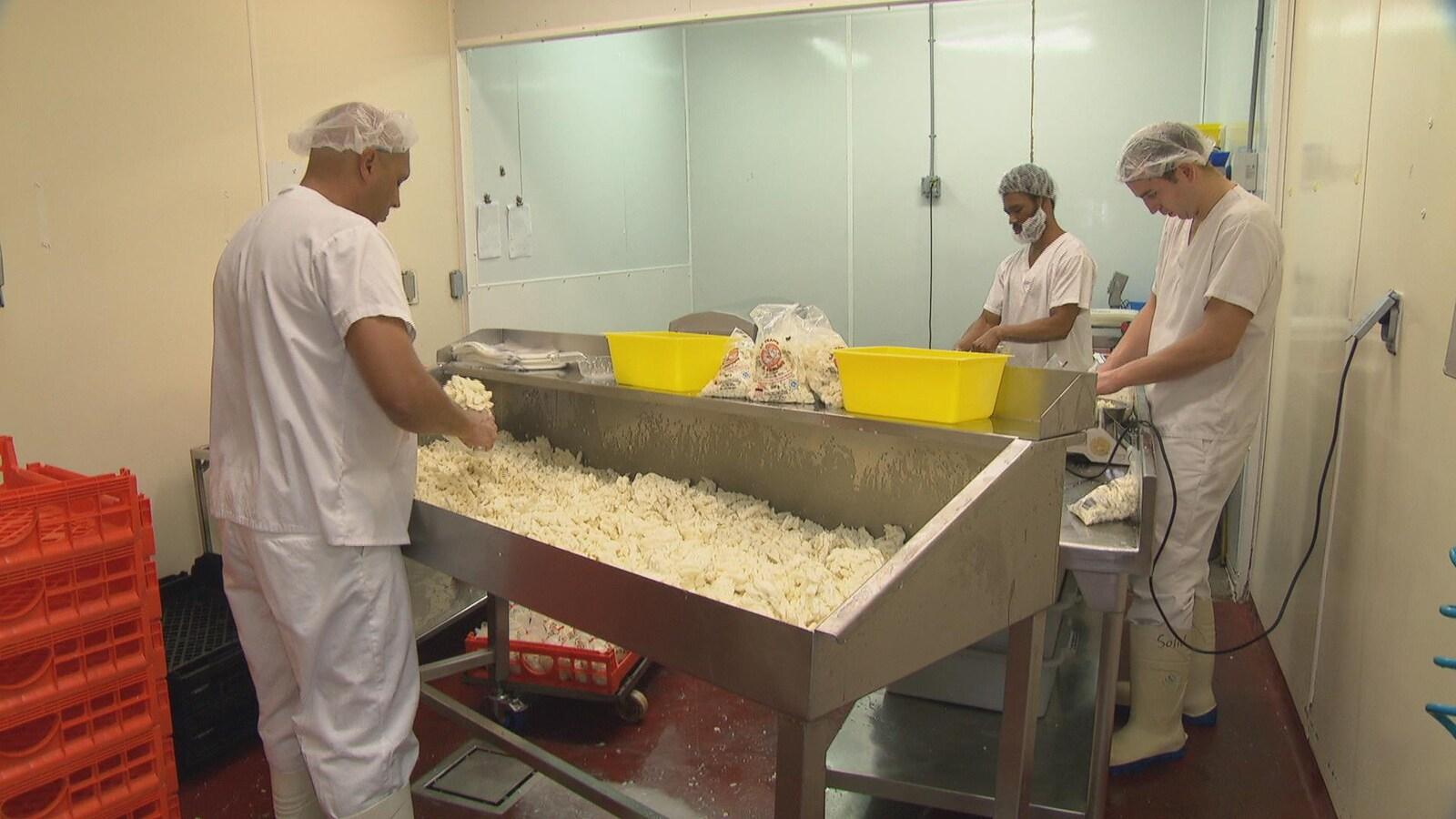 Des employés produisent et emballent du fromage dans une salle.