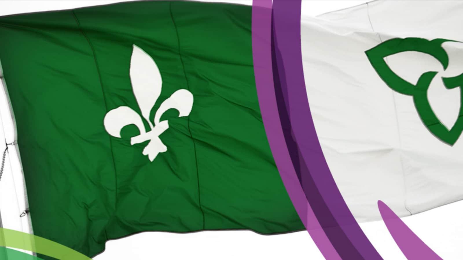 Le drapeau franco-ontarien en arrière-plan sur le site web de l'Assemblée de la francophonie de l'Ontario.