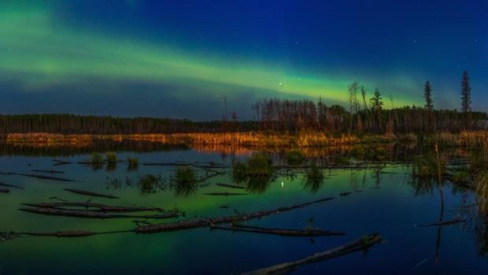 Aurores boréales vertes au-dessus d'un lac et d'une forêt. Reflet de l'aurore dans le lac.