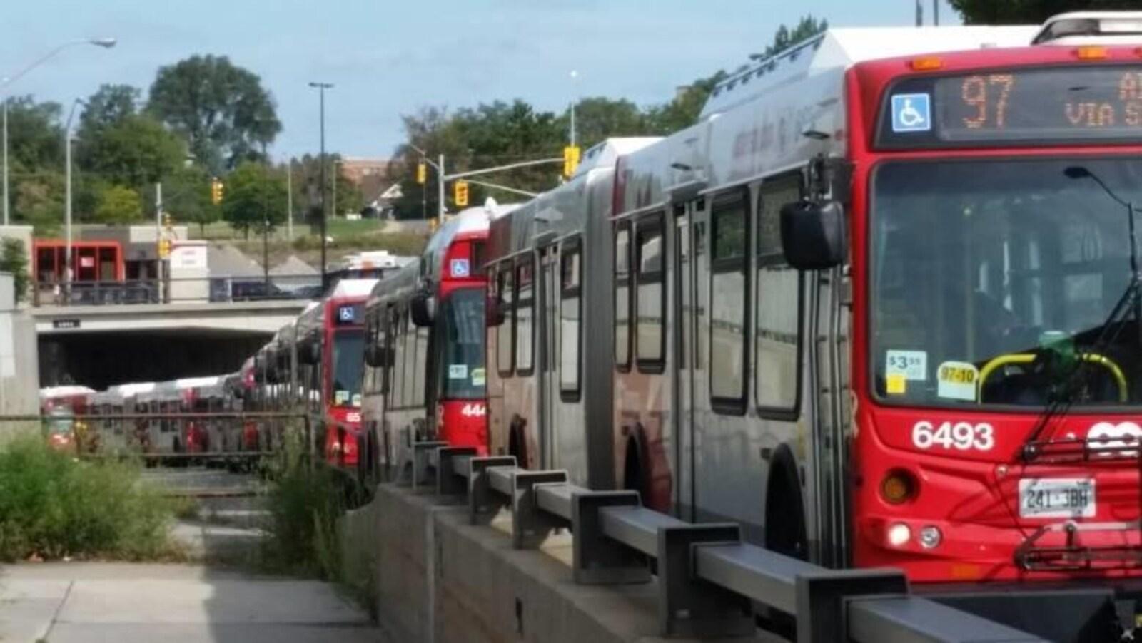 Des autobus à Ottawa.