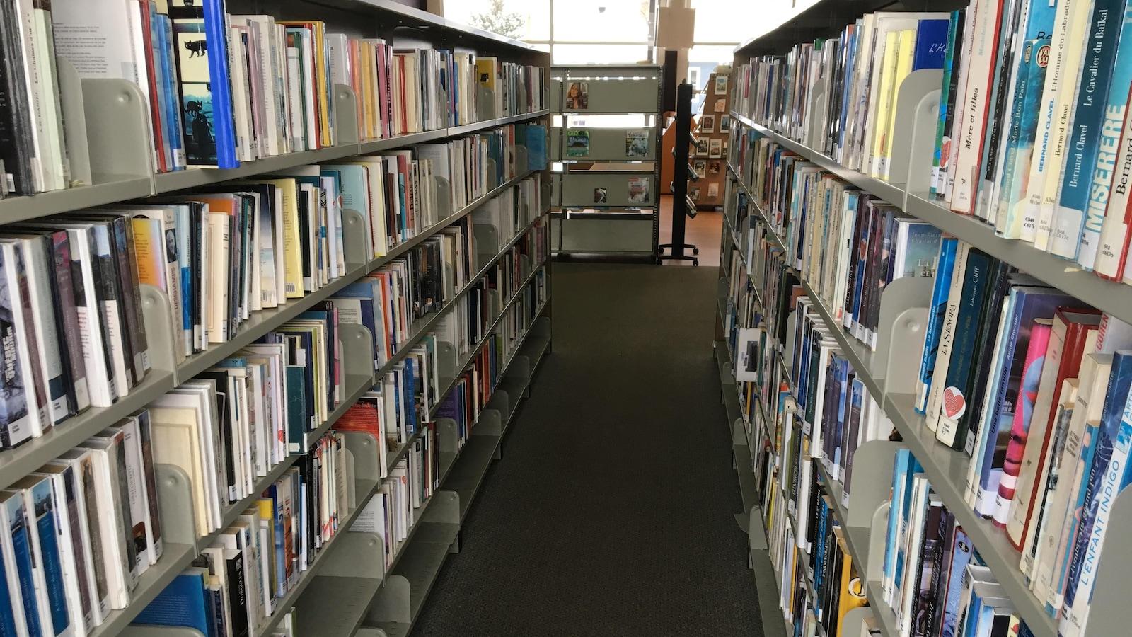 Une rangée de livres dans une bibliothèque.