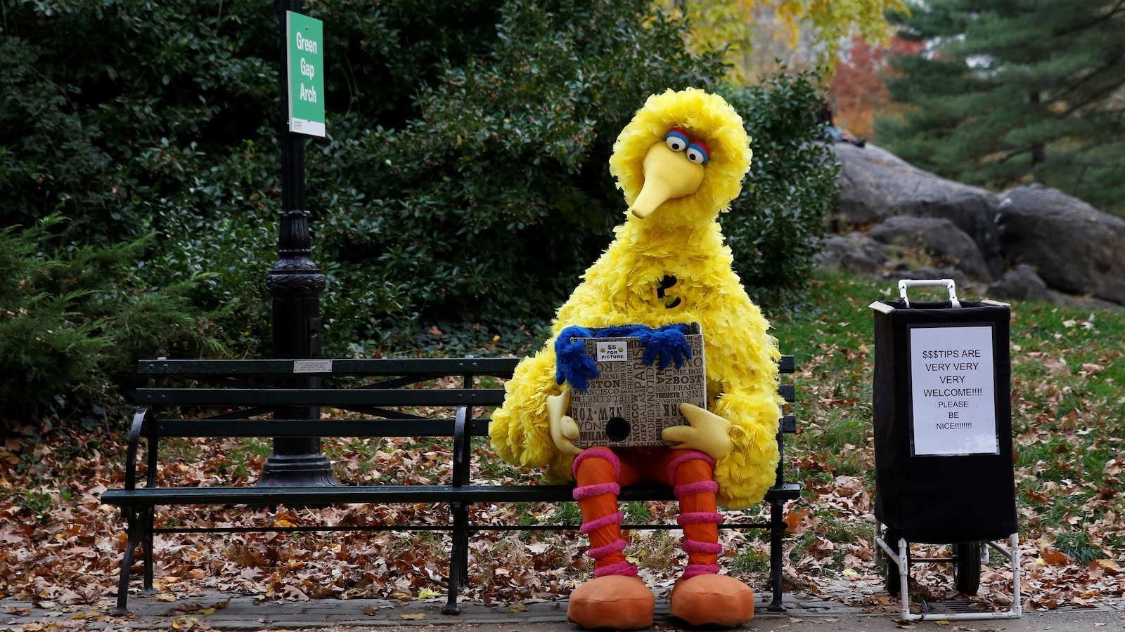 Big bird dans Central park
