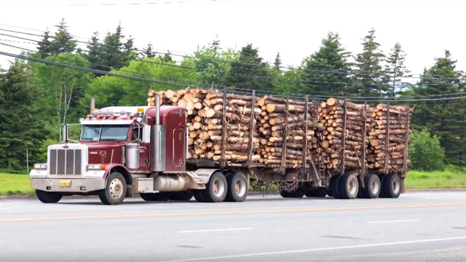 Un camion qui transporte du bois.