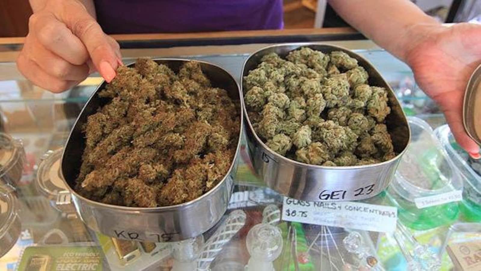 Des plats de métal contenant de la marijuana.