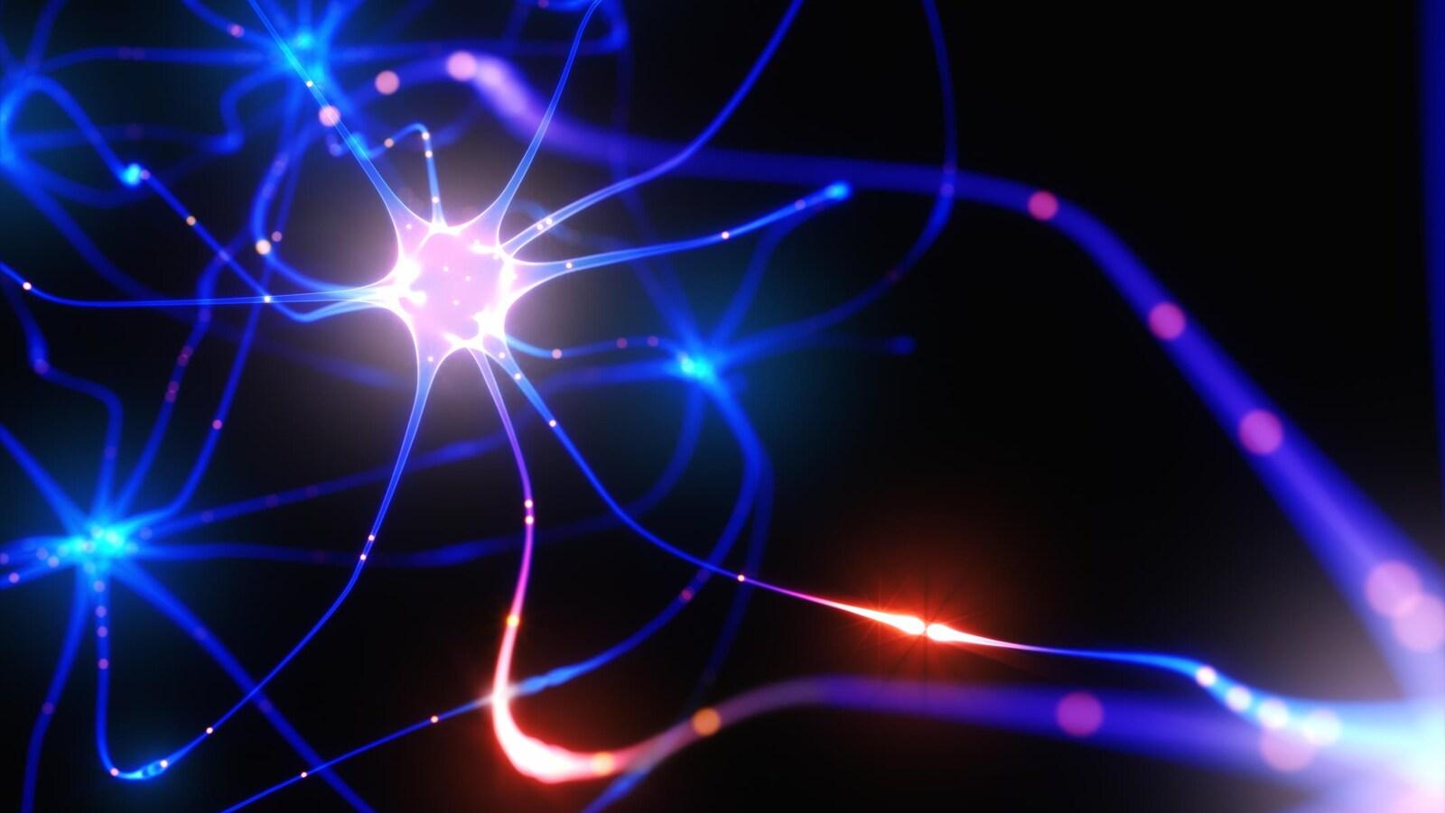 Représentation artistique d'un neurone.