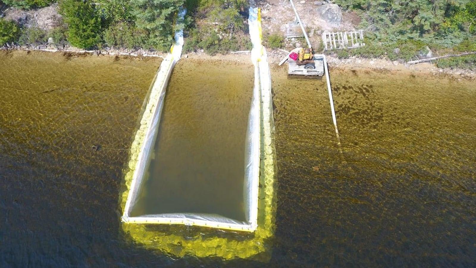 Une zone d'un lac près de la rive délimitée par une barrière.