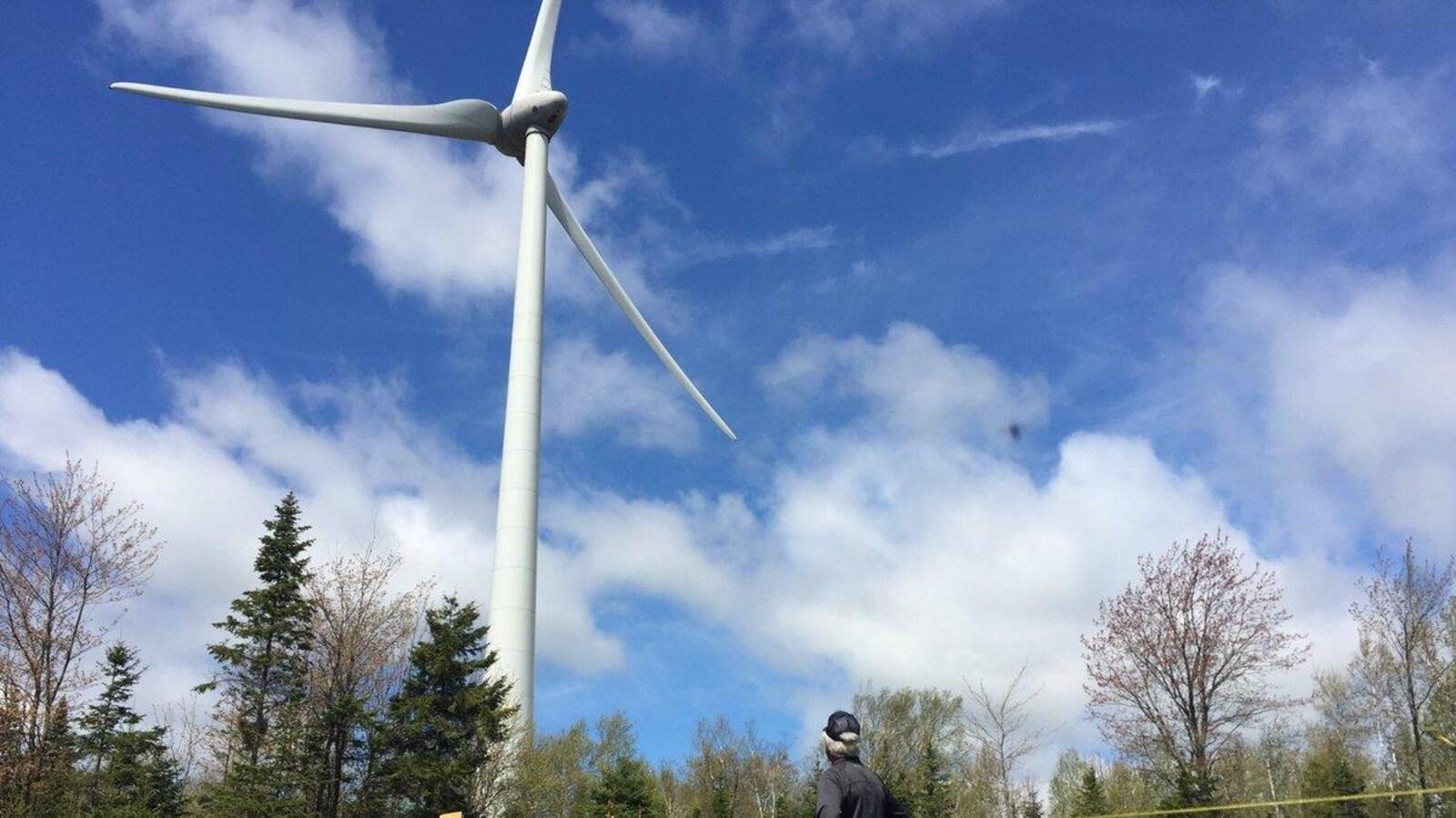 Un citoyen regarde une éolienne
