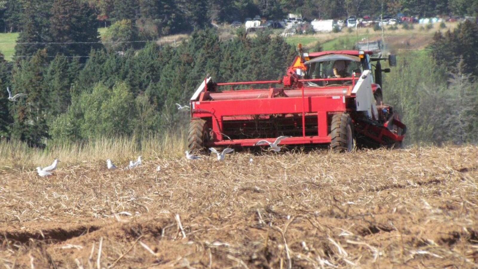 Un tracteur coupe du foin dans un champ.