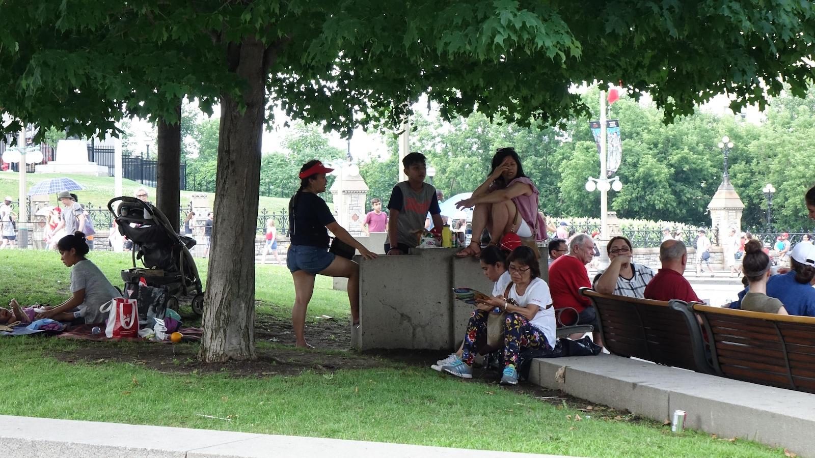 Des gens assis sous un arbre dans un parc du centre-ville d'Ottawa.