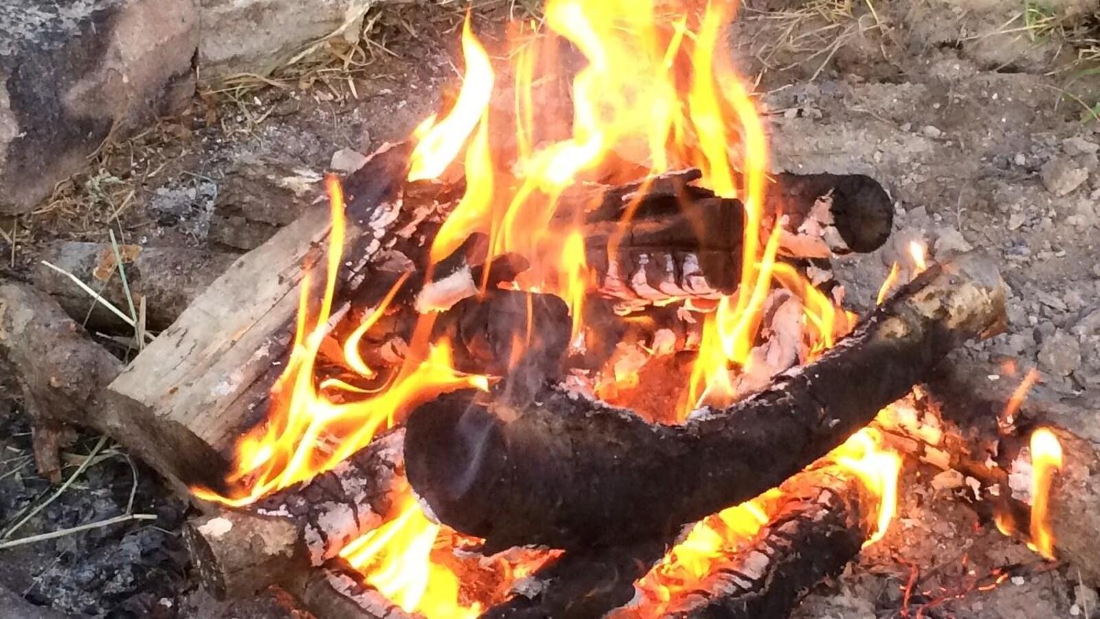Un feu de camp.