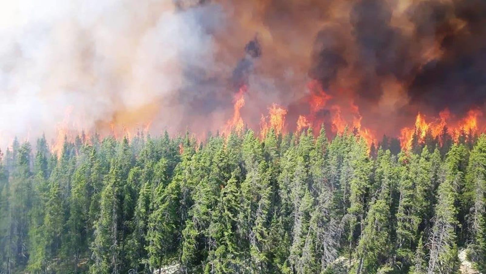 Des flammes s'élèvent au dessus d'une rangée d'arbres dans le secteur de Labrieville.