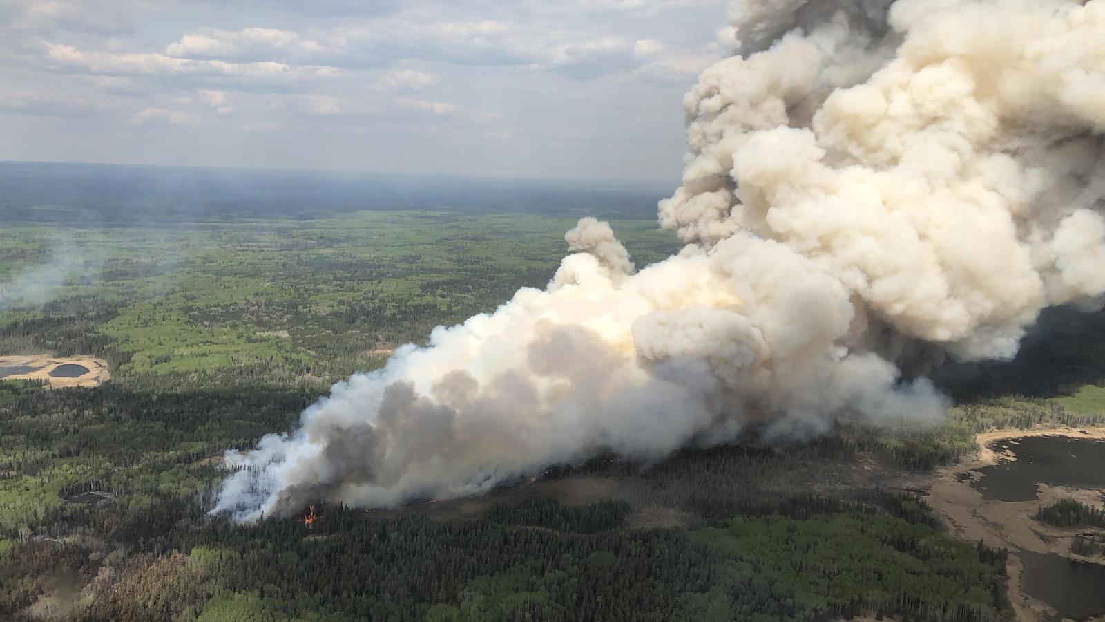 Un feu de forêt et la fumée qui en émane.